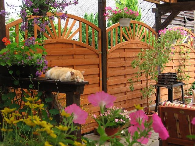 présentation du garden staging photo de la terrasse aménagée